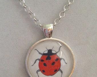 Ladybug Pendant Necklace