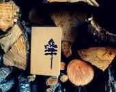 Loblolly Pine Tree Rustic Nature Journal Pocket Moleskine Notebook Autumn Winter Hostess Gift Stocking Stuffer Christmas Present