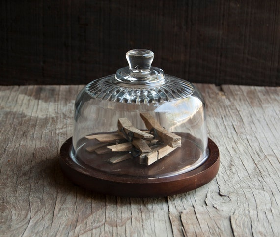 Glass Display Cloche with Rustic Wooden Base