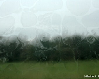 Cloudy Windows, green, black, white, gray, bubbles, photograph