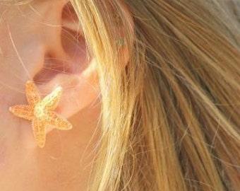 sugar starfish stud earrings