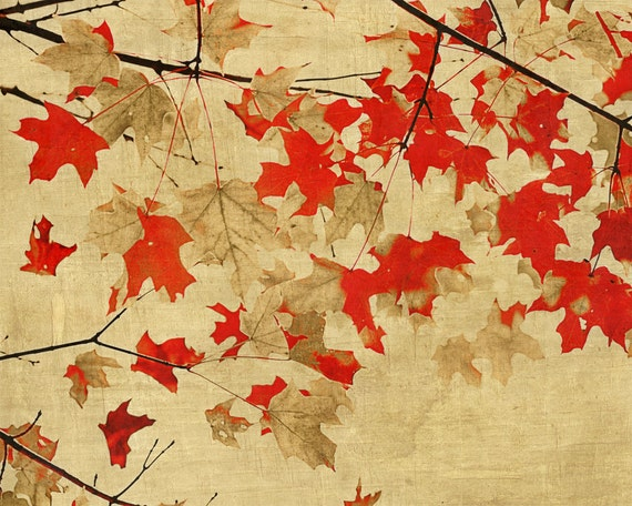 Fall Autumn Leaves Red Digital Textures - 16x20 photography art print by Dawn Smith