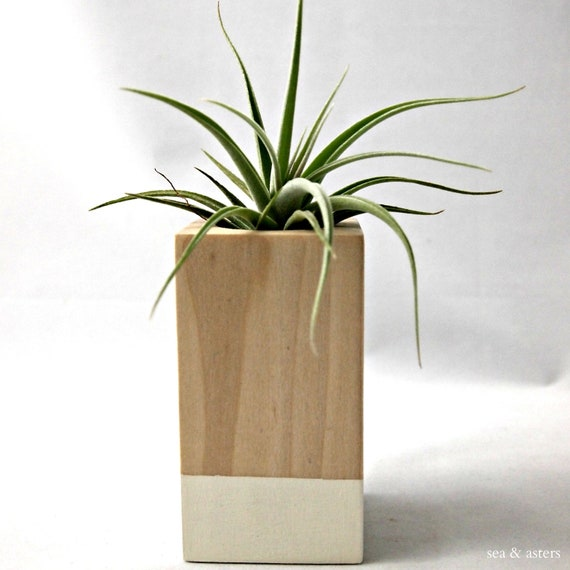 Oatmeal // Wood Colorblock Container Cube - Leonamiana // Planter // Home and Garden