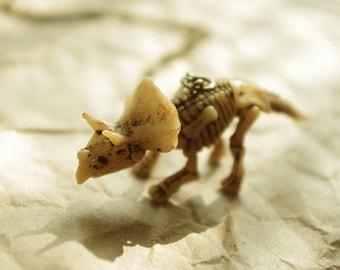 Triceratops Dinosaur Skeleton Necklace