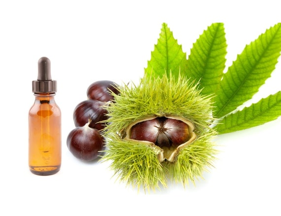 how to make horse chestnut oil