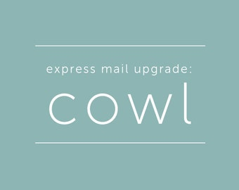 Express Mail Shipping Upgrade - Cowls only