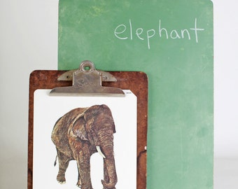 Large vintage language flash card, elephant, 1980's