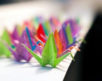 1000 Assorted Color Paper Cranes