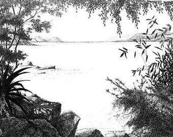 """Original drawing or Limited Edition Pen and Ink Print of """"Coki Cay on St Thomas Island """""""