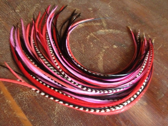 Real Hair Feather Extensions Long 5 Feather Valentine Hair Accessory Bundle Red, Hot Pink, Black, Grizzly Feather Hair Extension
