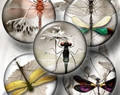 Dragonflies Minimal - 20mm, 18mm, 16mm, 14mm and 12mm circles - Digital Collage Sheets CG-564 for Jewelry, Crafts