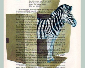Zebra in a box -Original Illustration-Art Print-Art Poster- Hand Painting Mixed Media- French 1920 Vintage Paper
