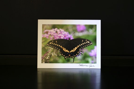 Swallowtail Photo Greeting Card