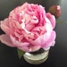 Fine Silk Floral Arrangement Faux Pink Peony In Cylinder with Illusion Faux Water Shabby Chic