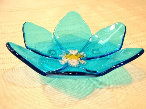 how to grow a lotus flower in a bowl