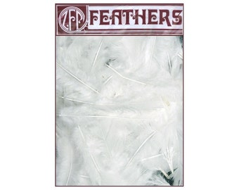 """White Turkey Feathers  - package of approx.  75 ct  -  White  - approx. 4"""" - 6"""" in length - loose feathers bulk supplies  B708/W"""