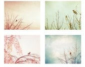 Bird Photography Set - Four 8x10, 5x7 Photographs - nursery art prints bird tree pastel pink pale blue green teal white baby boy girl photo