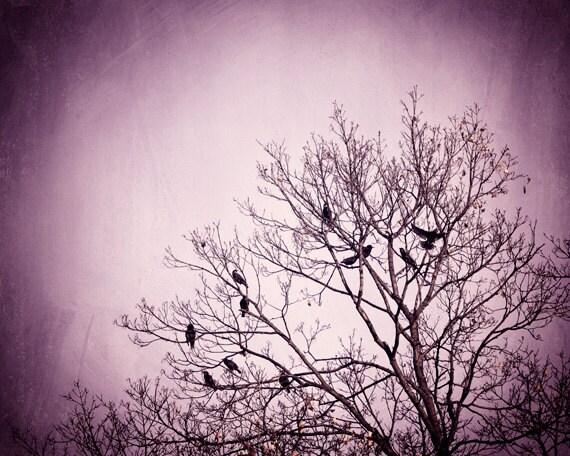 Purple Wall Art - birds tree black dark wall art pink nature photo branches  print modern