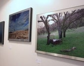 Photography printed on Aluminum - Choice of 3 Images - Time's Lost Slumber, Into the Mist, Summoning