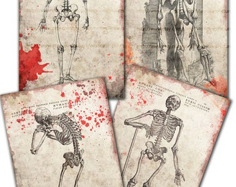 Digital Halloween Papers Skeletons of human bones anatomy antique vintage ,blood splash, 4 cards 4x6 in size, digital download images