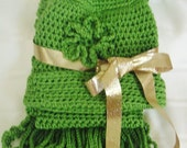 Crocheted Hat and Scarf Gift Set in Guacamole Green Acrylic