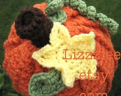 Pumpkin Crochet Hat PATTERN PDF - Instructions to make super cute, easy hats - newborn to adult - Instant Digital Download