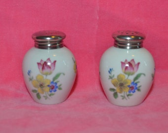 Thomas R Germany Vintage Porcelain Silver Capped Salt and Pepper Shaker Floral Pattern