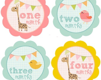 Monthly Baby Girl Stickers Baby Month Stickers Girl Monthly Bodysuit Sticker Banner Bunting Giraffe Birds (Darla)