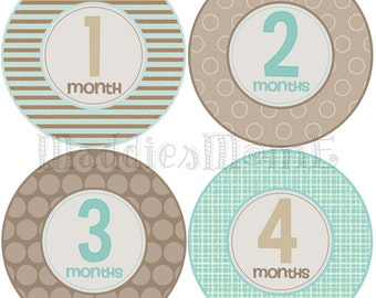 Monthly Baby Boy Stickers Baby Month Stickers, Monthly Bodysuit Sticker, Monthly Stickers (Steele)