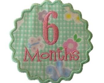 Monthly Onesie Applique Machine Embroidery Designs - Newborn Through 12 Months - 2 Sizes Each