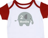 Elephant Baby Onesie Stickers - Fabric Monthly Stickers - Pre-Cut