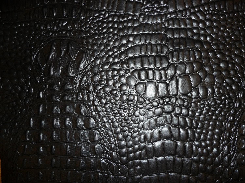 Leather Closeout 8x10 Black Alligator Croc