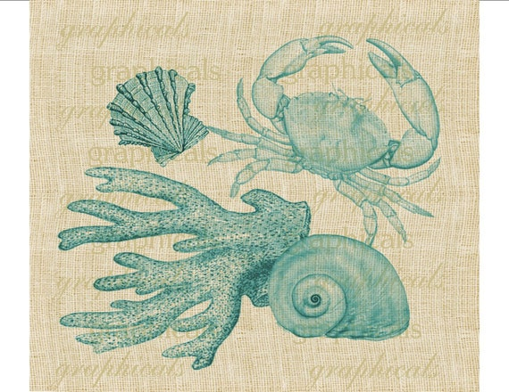 Marine instant clip art Blue crab shell coral Digital download graphic image for iron on fabric transfer decoupage pillow tote No. 1700