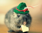 Refrigerator Magnet Gerbil Wearing A Green Hat Rectangle