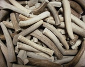 5 natural antler dog chew treats pet food bone deer toy