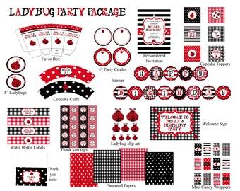 Ladybug Birthday Party Package