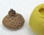 ACORN cap mold real acorn cap non-toxic flexible silicone mold  mould for FIMO, scrapbboking, resin, miniatures