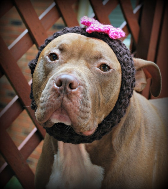 Dog Collar or Headband Crochet Brown with Pink Flower for Large Breeds