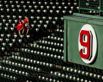Photo Fenway Park section numbered 9, Ted Williams, Boston Red Sox, 8x12, sports, baseball, man cave decor