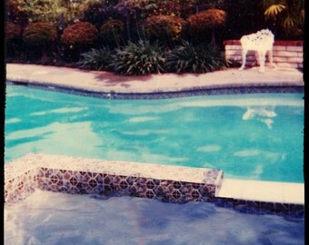 Swimming Pool Photography, Retro California Art, Swimming Pool, Retro 1970's Art, David Hockney, Mid Century Fine Art Photography