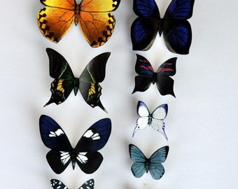 Butterfly Magnets Kitchen Decor Set of 9 Insects Refrigerator Magnets Multi Color Home Decor