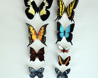 Butterfly Magnets Set of 9 Insects Refrigetor Magnets Kitchen Decor Multi Color