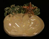 Crab and Starfish Soap Dish