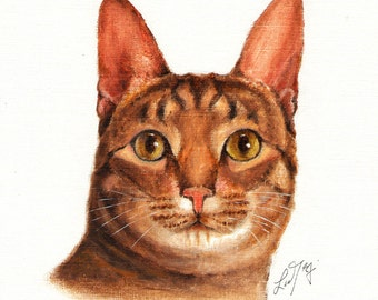 Original Oil CAT Portrait Painting OCICAT Art On Canvas Kitten Artist Signed