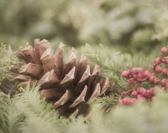 Christmas Photograph, Rustic Home Decor, Brown and Green Wall Art, Pine Cone Picture, Pinecone Photography