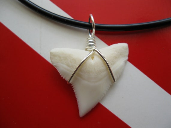 Shark Tooth Necklace, Modern Day White Shark tooth, Silver plated wire, Soft Rubber cord