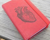 Anatomical Heart Journal Sketch Book