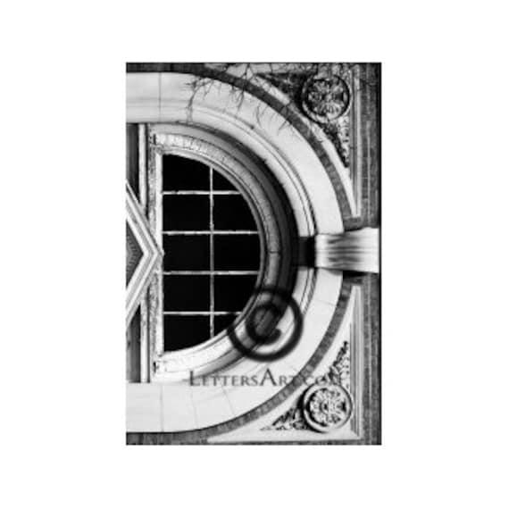 Only 1.99 INSTANT Letter Art - 4x6 photo download - printable - digital image - alphabet, nature, architectural letter art font FAST D-10