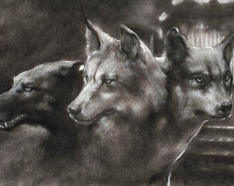 Postcard - Guardian of the Gate - Cerberus the three-headed dog - mini art print of a charcoal drawing