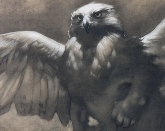 Postcard - Dawn - A majestic and mythical griffin / gryphon - mini art print of a charcoal drawing